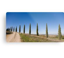 Tuscan Cyprus Trees Metal Print