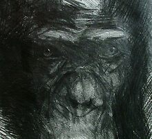 Chimp Study by Josh Bowe