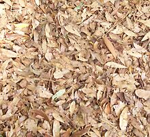 Natures carpeting by sweetdesign