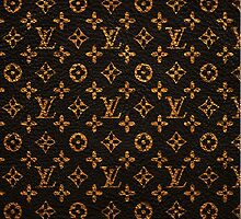 Louis Vuitton the case by Lightkeeper