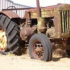 Old John Deer by Bruce Moon