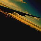 flying high by Michael  Regan