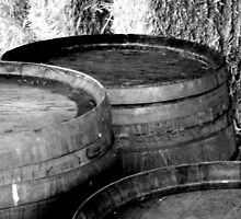 Penny's Hill Barrels by Camilla