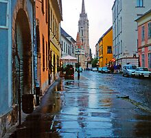 Rainy Street in Buda, Hungary 2001 by Priscilla Turner