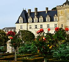 Villandry Castle - Loire Valley - France 4 by Alison Cornford-Matheson