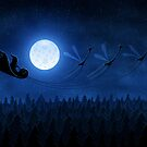 Christmas: Santa Flying 2 by vladstudio