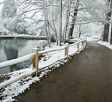 winter walk by NARDO
