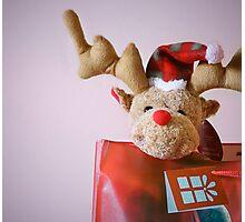 Christmas Reindeer Photographic Print