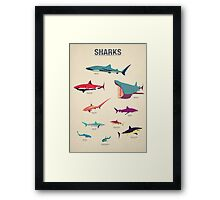 Sharks Framed Print