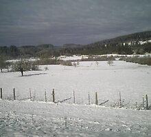 Winter in Oregon Coast Range by Psikologyst
