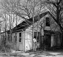 Desolate by Amanda Yates