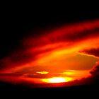 Winter Sunset by Honor Kyne