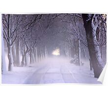 Snowy Winter Alley in Park Poster