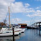 St. Michaels Harbor by Mary Campbell