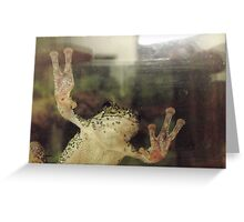 Frog On Glass Greeting Card