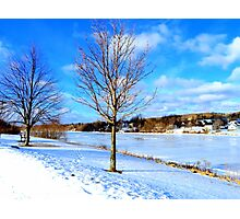 Beauty of Winter Photographic Print