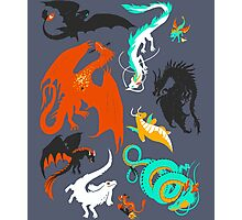 A Flight with Dragons Photographic Print