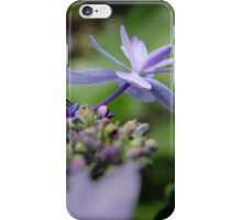 Shooting Star Hydrangea iPhone Case/Skin