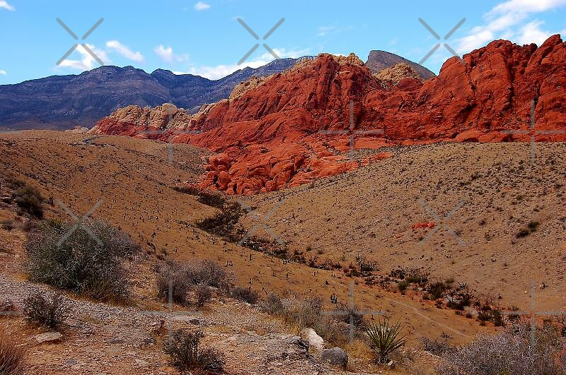 Red rock canyon in nevada quot by loiteke redbubble
