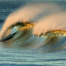 A Pair of Crests On One Wave by David Orias
