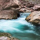 Virgin Pool – Zion National Park, Utah by Jason Heritage
