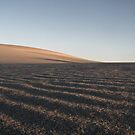 Dark Point Dune 14 by angelo marasco
