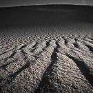Dark Point Dune 10 by angelo marasco