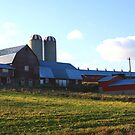 Farm Scene by HALIFAXPHOTO
