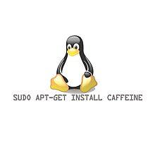 Linux - Get Install Caffeine by brzt