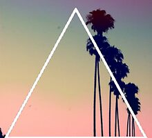 Palm Trees - Triangle by bjtaylor99