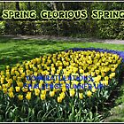 Spring, Glorious Spring - Challenge Runner-up Banner by BlueMoonRose