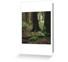 { fern gully } Greeting Card