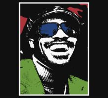 STEVIE WONDER by OTIS PORRITT