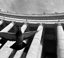 In flight - Vatican City by Paul Louis Villani