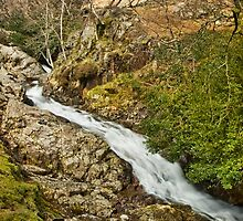 Stickle Ghyll by eddiej