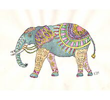 Painted Elephant Photographic Print