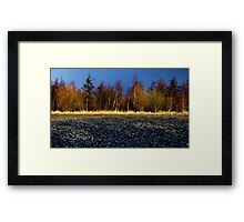 Line of Trees Framed Print