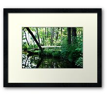 Your Canoe Is Waiting Framed Print