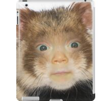 Laicey the Hamster iPad Case/Skin