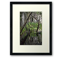 Cambodian Reflection - Beng Melea Temple Framed Print