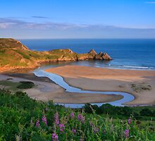 Three Cliffs Bay by Andrew Doggett