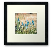 Forest of Blue Framed Print