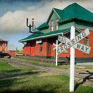 Pollockville Station by Amanda White