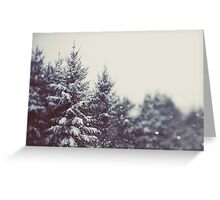 Winter Daydream #2 Greeting Card