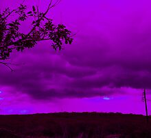 Purple Storm by Cheyenne
