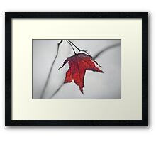 The Only II Framed Print