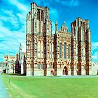 Wells Cathedral, West Front 1993 by Priscilla Turner