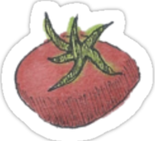 Tomato Watercolor Sticker Sticker
