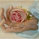 Heart in Hand  by SandraRos