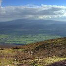 View from Trail up to top of Slievenamon, Tipperary by Mark O&#x27;Toole